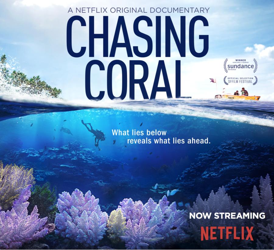 En busca del coral Documental